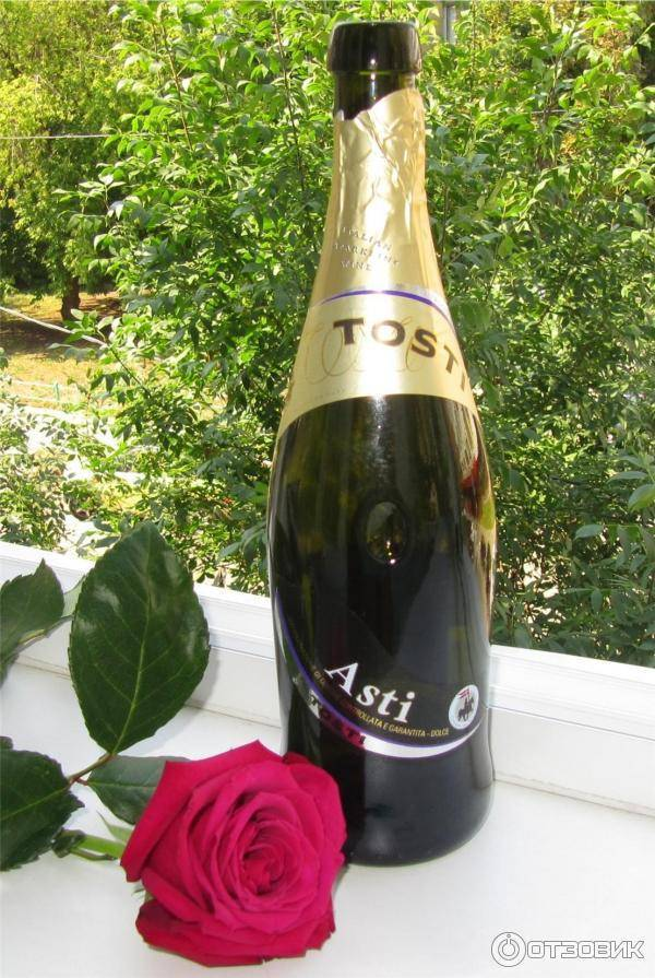 Мартини асти – это шампанское или вино?