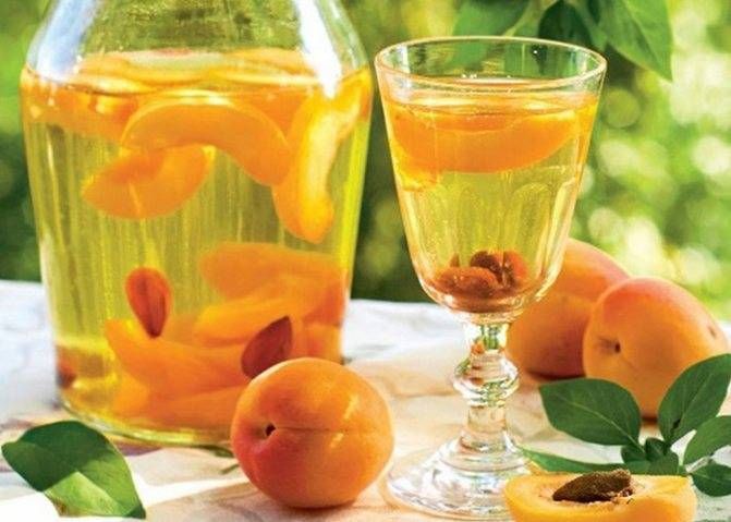 Как приготовить абрикосовый самогон в домашних условиях