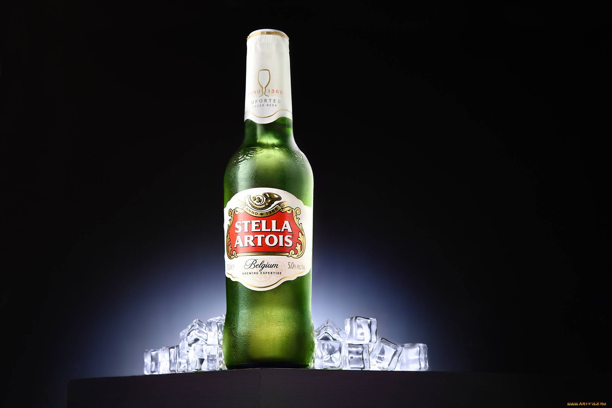 Лучшее пиво мира на beermonsters.ru  » blog archive   » стелла артуа