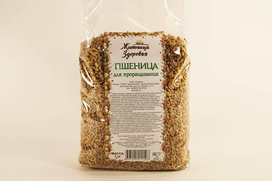 Как приготовить брагу из пророщенной пшеницы без дрожжей?