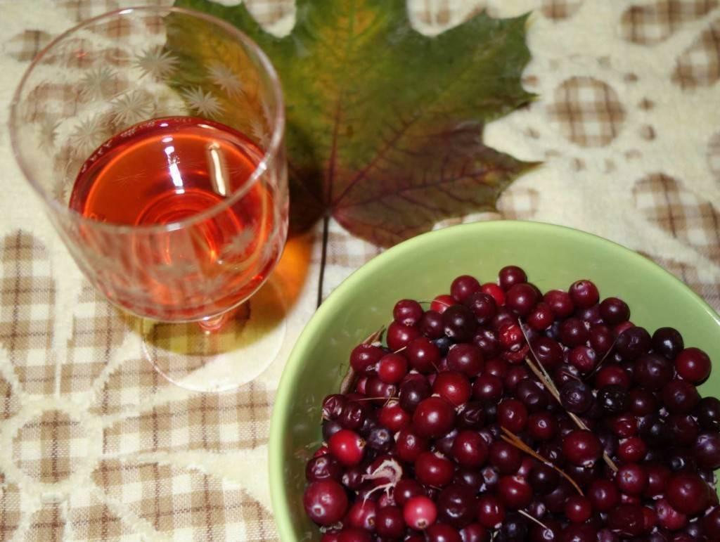 Калиновка — вкусная настойка калины на водке