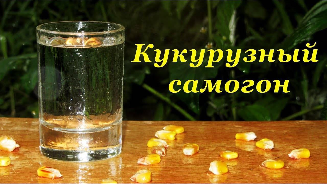 Самогон из кукурузы в домашних условиях: простые рецепты