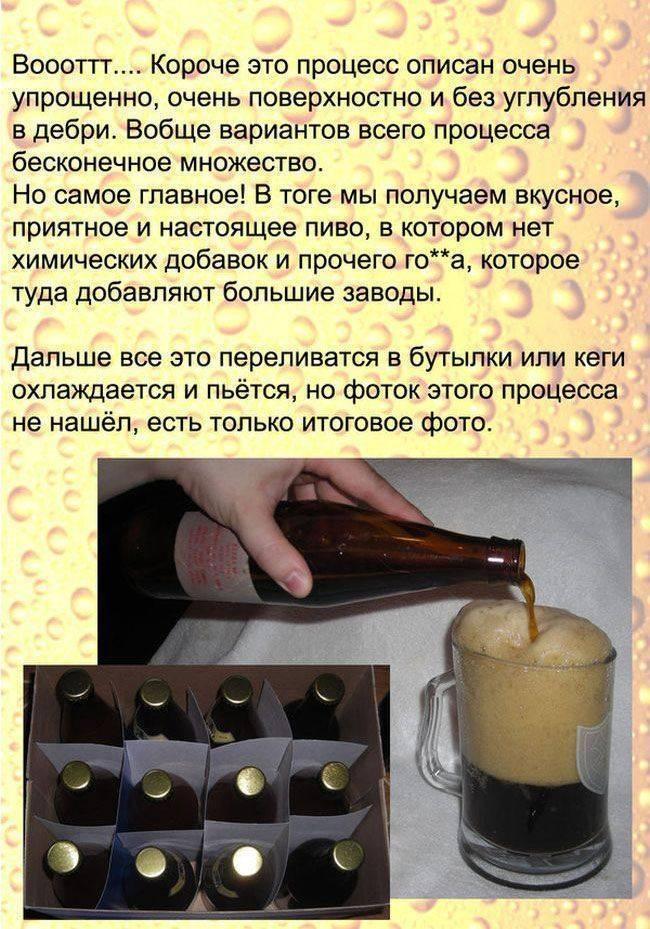 Узнайте рецепты немецкого пива