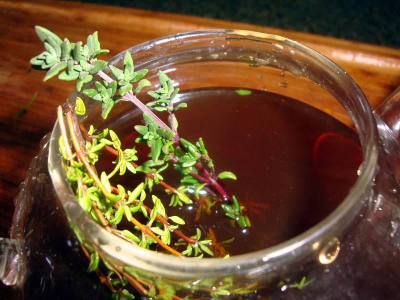 Лечение алкоголизма чабрецом | как приготовить и принимать чабрец от алкоголизма - lechilka.com