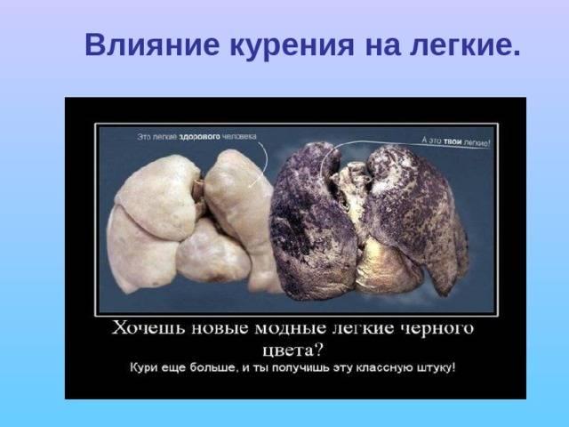 Печень во время курения и после отказа от него
