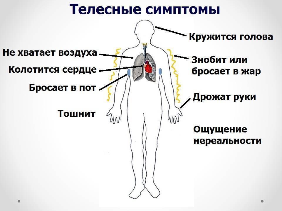 Панические атаки с похмелья: причины возникновения, симптомы, помощь во время приступа, профилактика