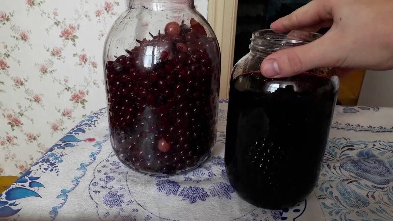 Домашнее вино из крыжовника и черной смородины - пошаговый рецепт