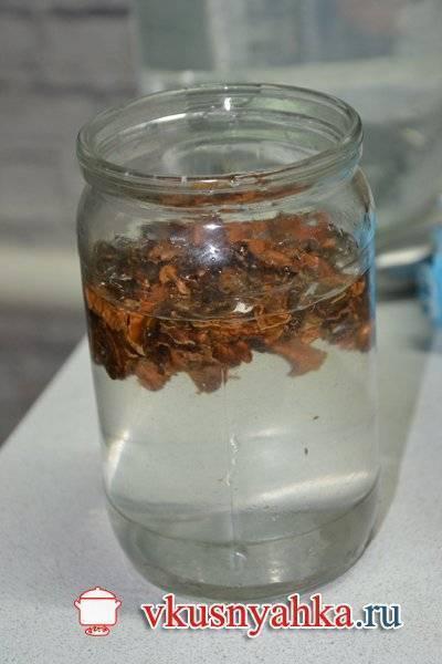 Настойка на перегородках грецкого ореха на водке: рецепт, применение, отзывы