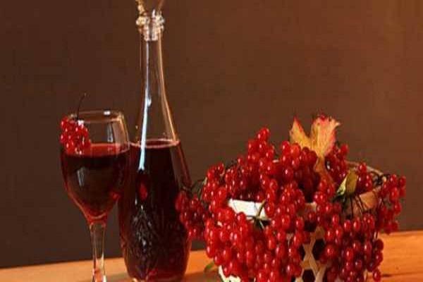 Вино из калины в домашних условиях – экзотический напиток, доступный каждому. рецепты вина из калины в домашних условиях | салаты | lediveka.ru