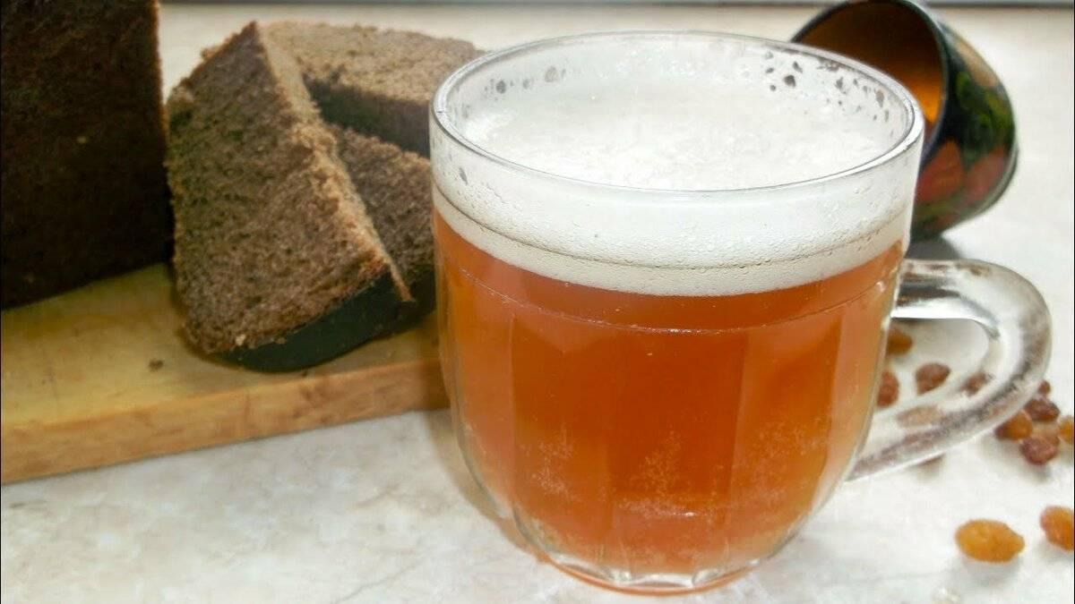 Делаем домашнее хлебное пиво - сам себе мастер - медиаплатформа миртесен