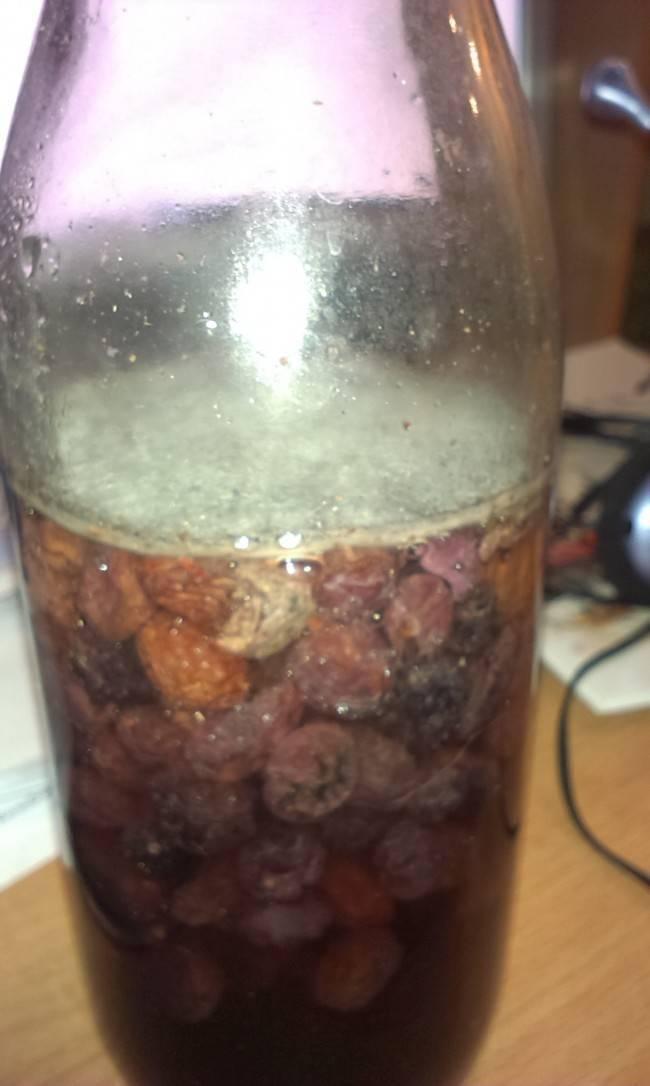 Можно ли сделать виноградное вино из плохого  (плесневелого) винограда, и что делать, если в вине появилась плесень