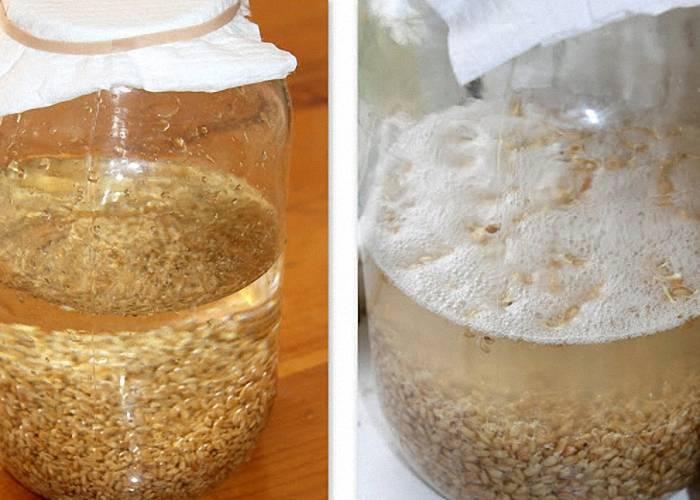 Ставим самогон на пшенице без дрожжей: лучшие рецепты