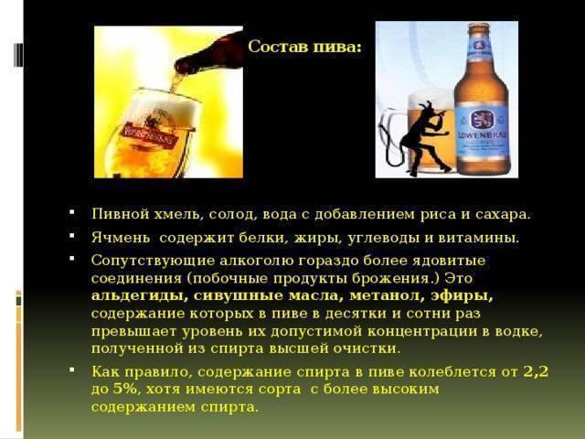 Состав пива: из чего делают пиво?  | pivo.net.ua