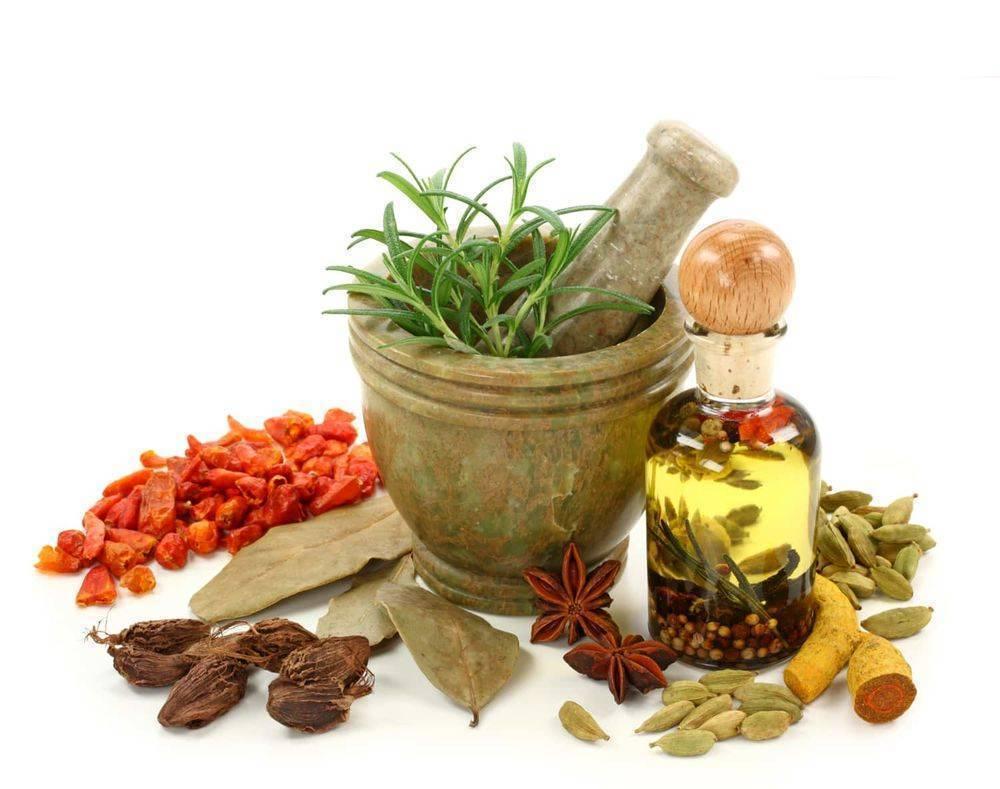 Рецепты полезного отвара лаврового листа в домашних условиях
