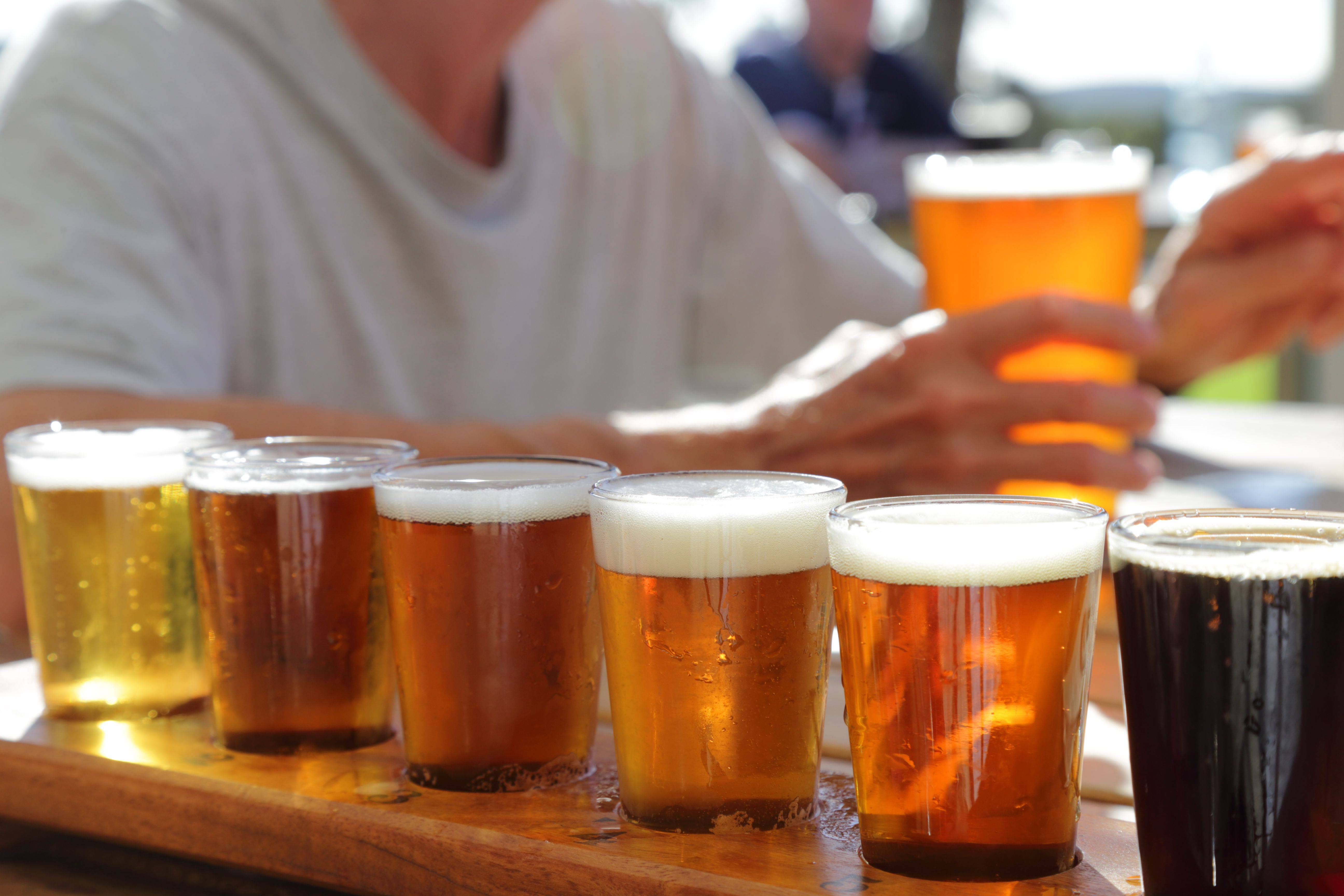 Какое пиво лучше пить – выбор марки и сорта напитка + видео   наливали