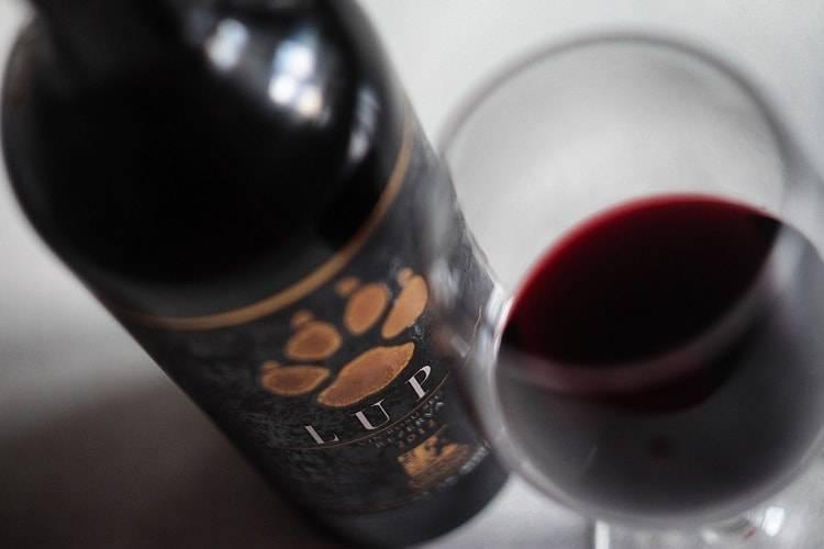 Морочное вино: почему молдавскому сухому тяжело возвращаться в россию   статьи   известия