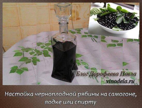 Полезная настойка на черноплодной рябине на самогоне