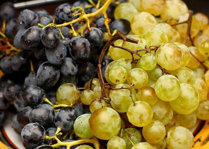 Коньяк из винограда в домашних условиях: рецепты