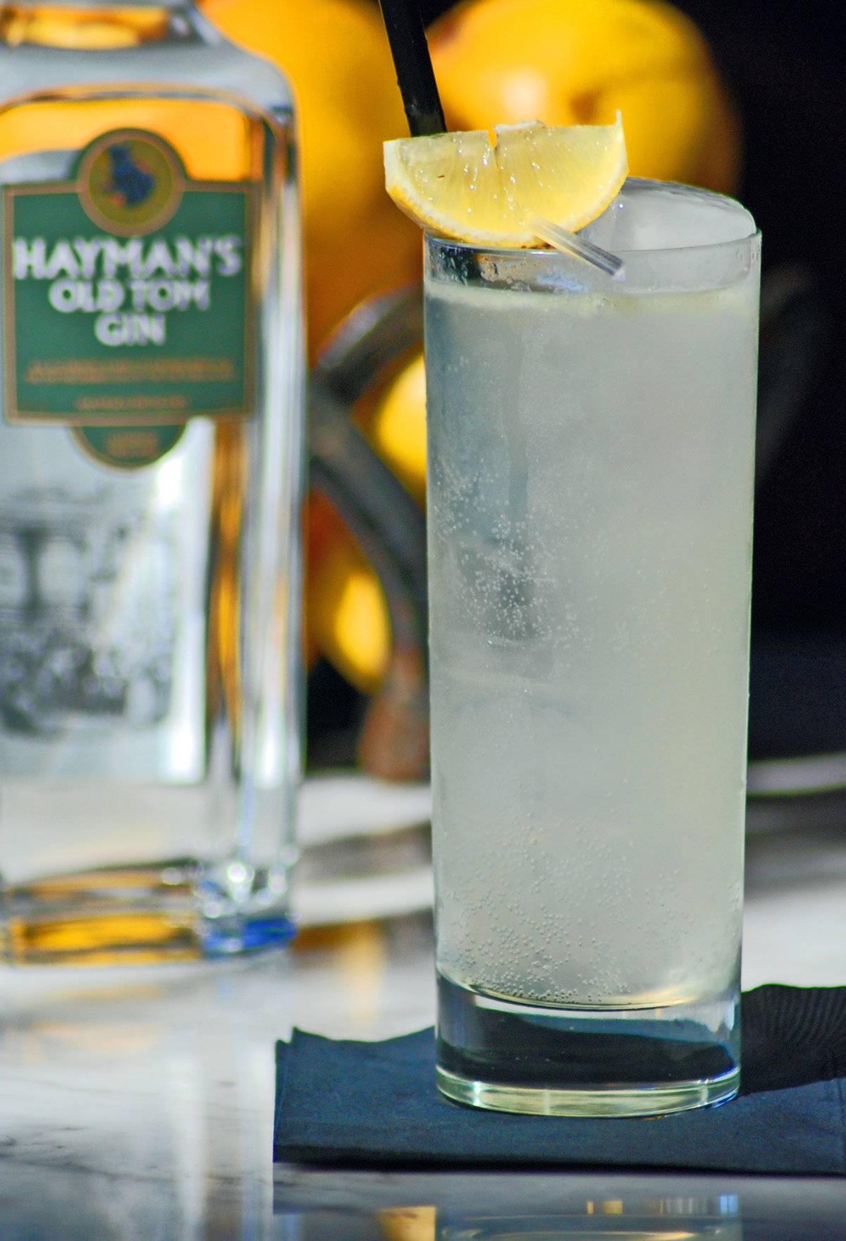 Что такое джин, как его выбрать и как правильно пить