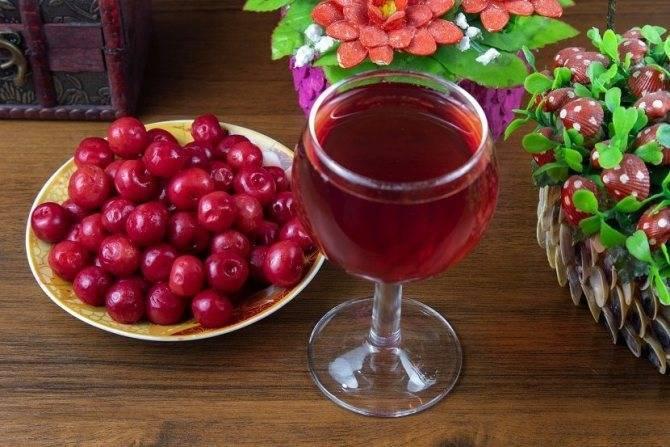 Вино из алычи в домашних условиях – лучшие рецепты