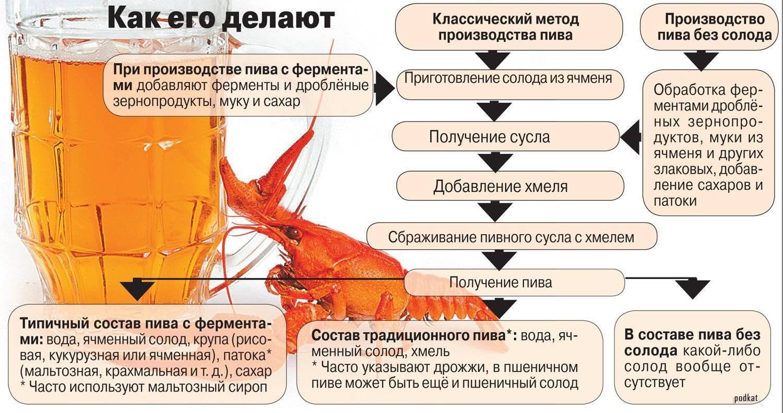 Что обычно входит в состав пива? | bezprivychek.ru