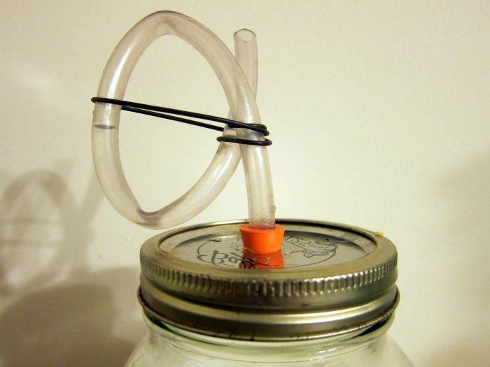 Гидрозатвор для брожения: для чего нужен, как сделать своими руками в домашних условиях, как использовать