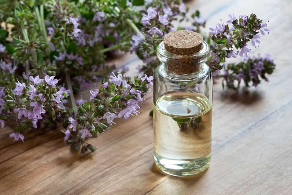 Лечение алкоголизма чабрецом без ведома больного: рецепт настойки, отвара трав