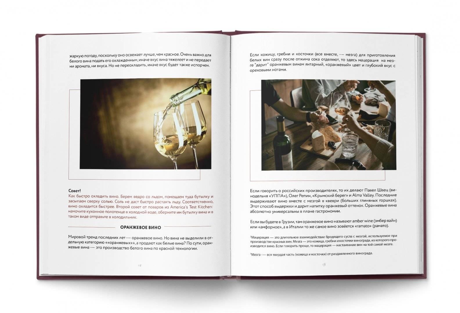 Как разбираться в вине: от цвета и вкуса до технологий производства