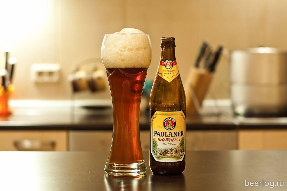 Пиво paulaner (пауланер) — история возникновения, состав напитка и отзывы потребителей