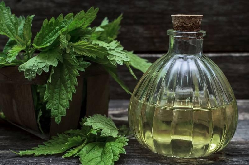Анисовая настойка:рецепты,противопоказания и полезные свойства