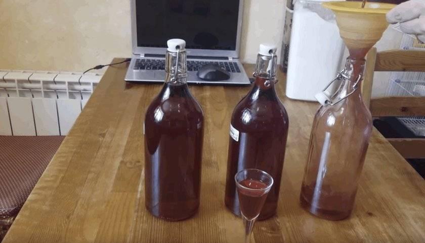 Настойка из брусники: рецепт на водке и спирту