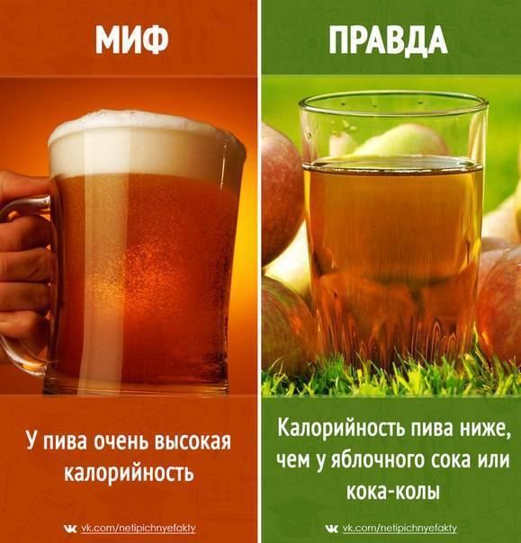 Калорийность пива: «портит» ли оно на самом деле фигуру? - международная платформа для барменов inshaker