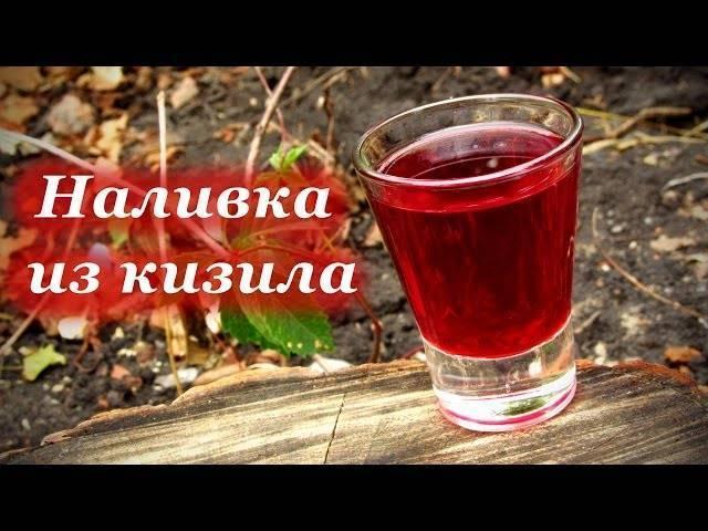 Настойка на кизиле в домашних условиях рецепты на водке на коньяке на спирту на самогоне наливка ликер чача - скороспел