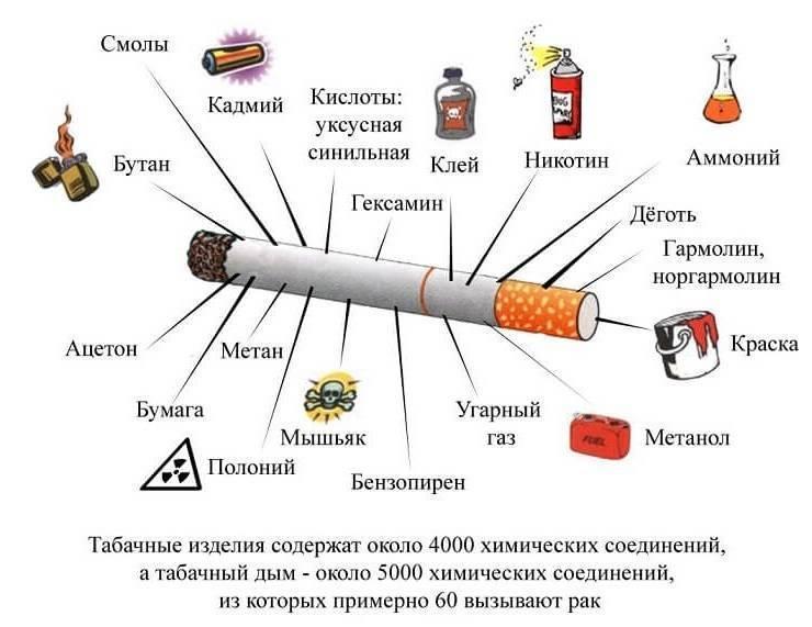 Сколько сигарет в пачке можно курить безвредно: стадии привыкания, вред никотина
