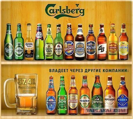 Двое из ларца. темное и светлое пиво – особенности