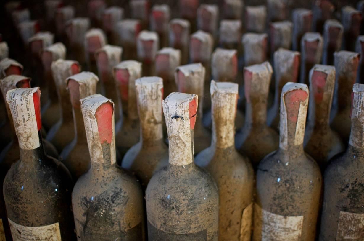 История вина и виноделия в мире - интересные факты появления напитка