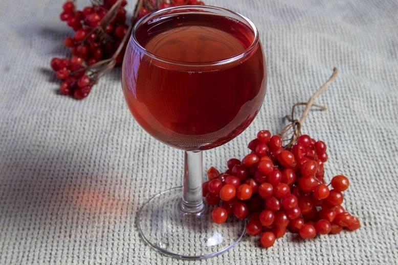 Настойка, вино и наливка из калины в домашних условиях (проверенные рецепты)