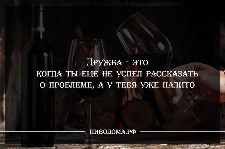 Прикольные фразы про алкоголь | шмяндекс.ру