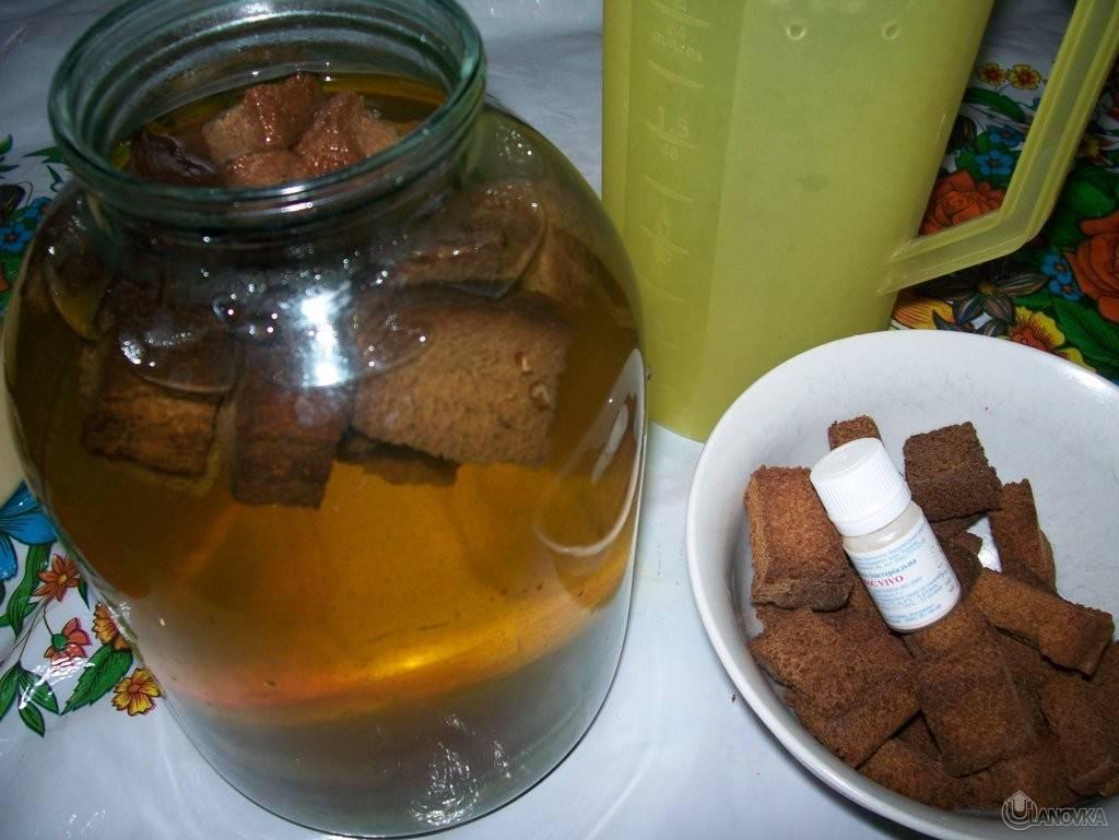 Домашний квас — 6 рецептов приготовления хлебного кваса