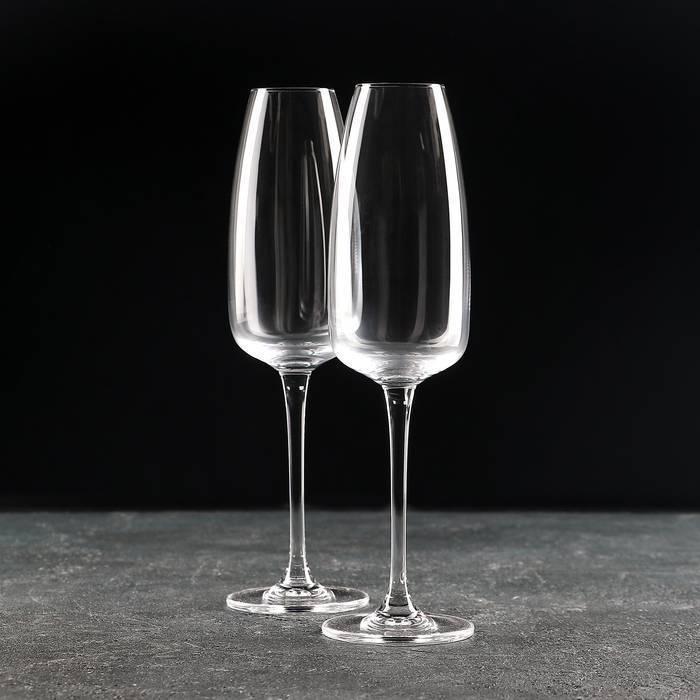 Какие бывают бокалы для шампанского, мартини, вина, коктейлей и прочего алкоголя