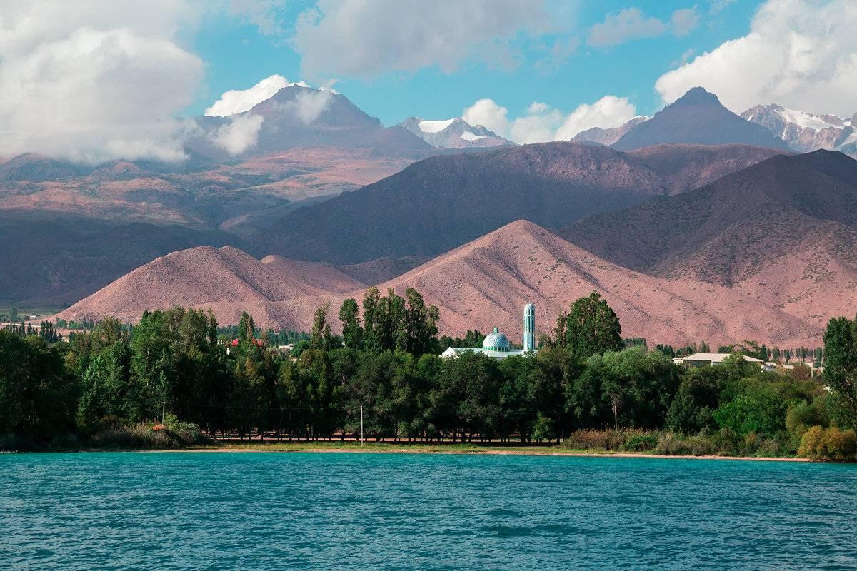 Коньяк «кыргызстан»: описание, отзывы и стоимость