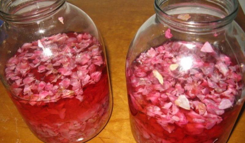 Вино из лепестков роз: простой рецепт приготовления в домашних условиях
