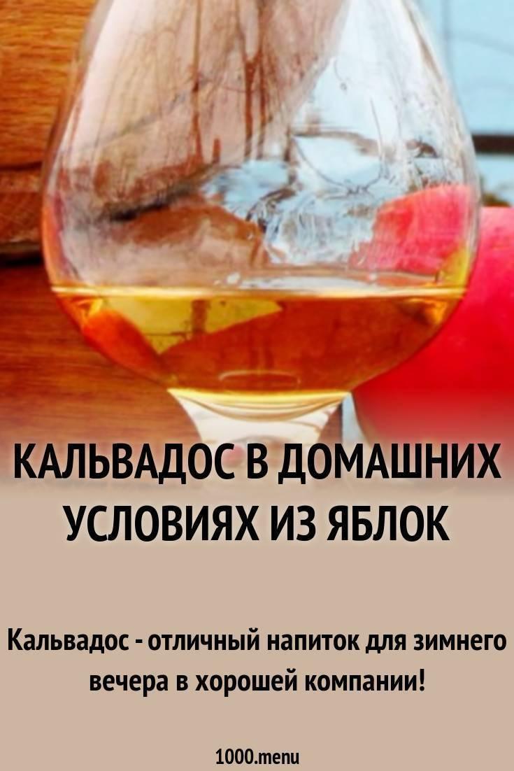 Кальвадос из яблок в домашних условиях - рецепты приготовления браги и напитка из сока, концентрата и жмыха