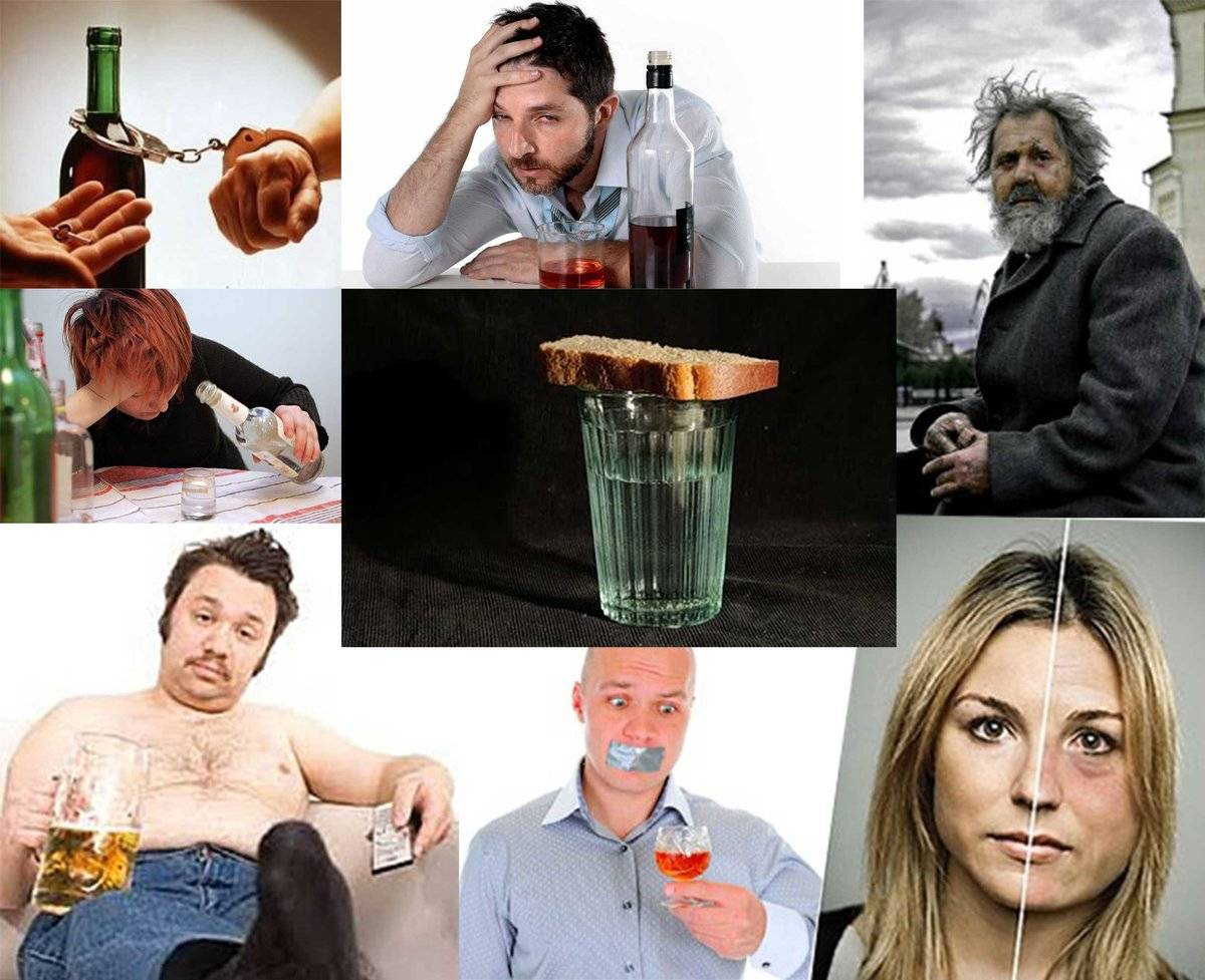 Как влияет приём алкогольных напитков на сознание и психические процессы. что алкоголь делает с вашим телом