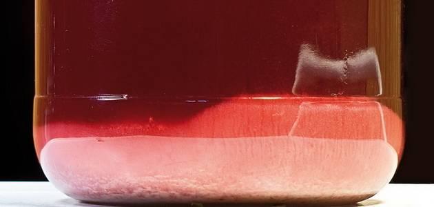 Оптимальная частота снятия вина с осадка на выдержке: что это такое и зачем она нужна?