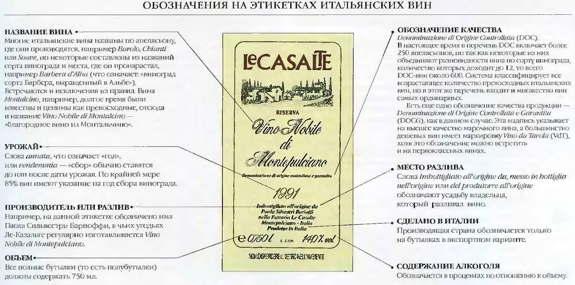 Сорта винограда для вина – выбираем по устойчивости к морозам