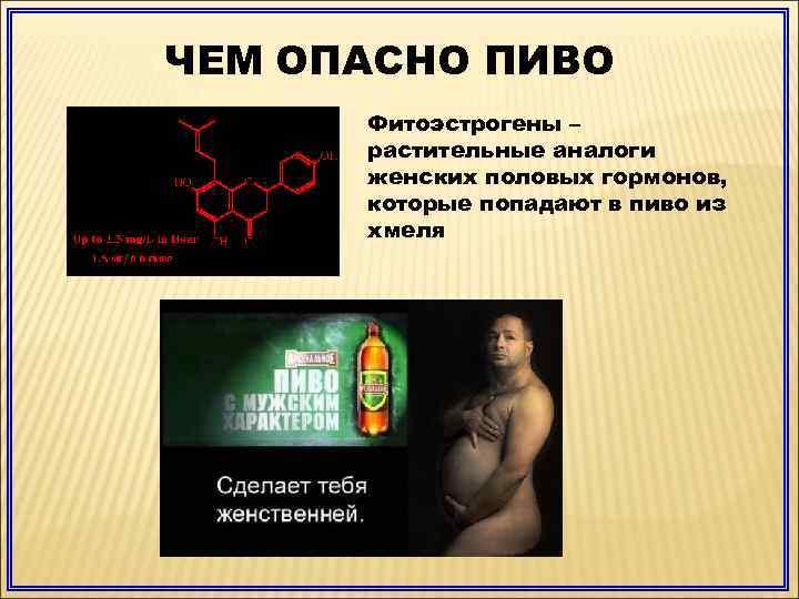 Женские гормоны в пиве: правда или вымысел?