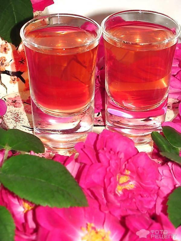 Настойки и ликёры из лепестков роз – 5 лучших рецептов