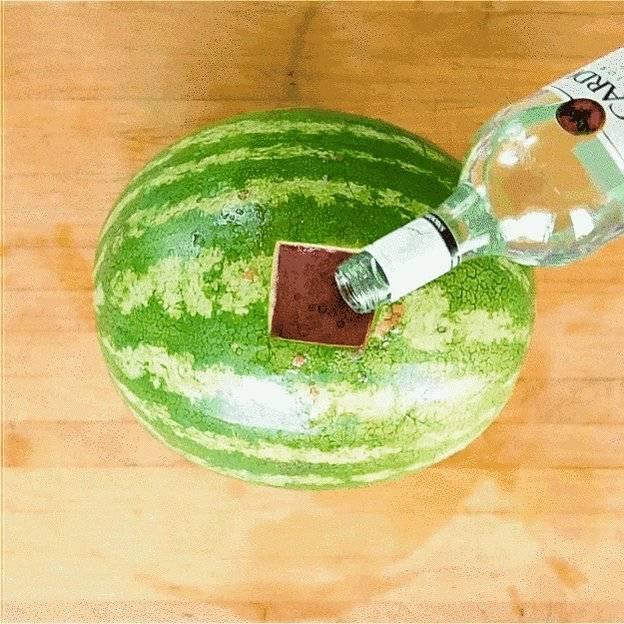 Арбуз с водкой сколько настаивать - простые пошаговые рецепты с фотографиями