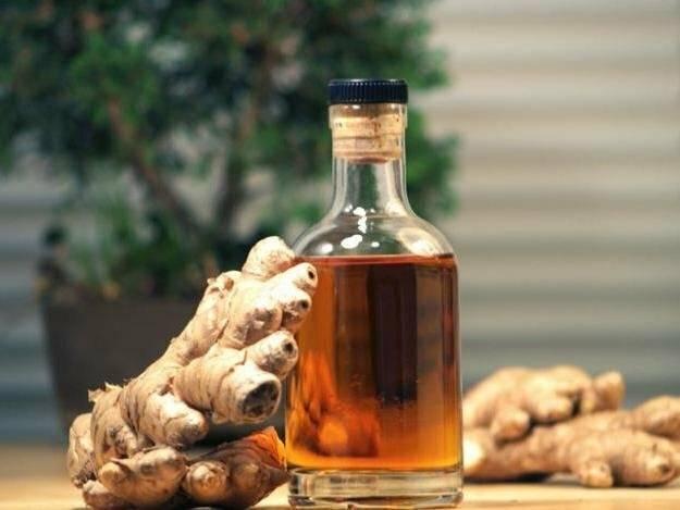 Лопух с медом: лечебные свойства корня, настоя, настойки, сока, отзывы, рецепты с водкой, как сделать для лечения желудка при гастрите, печени